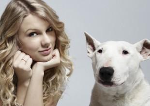 Taylor Swift y su mascota