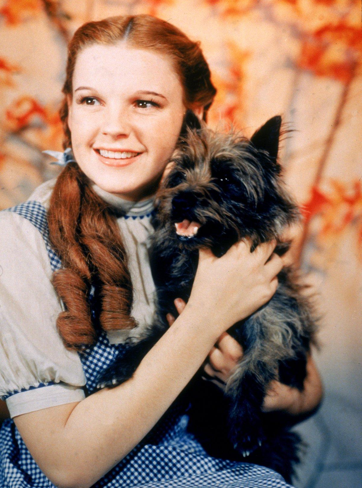 Judy Garland (1922 – 1969) / Sobredosis